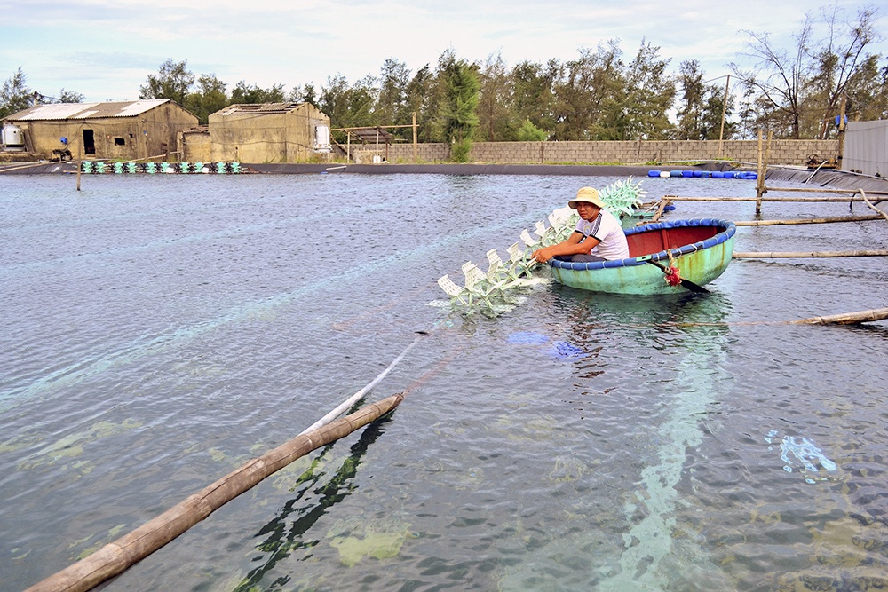 Vietnamese province aims to double shrimp production
