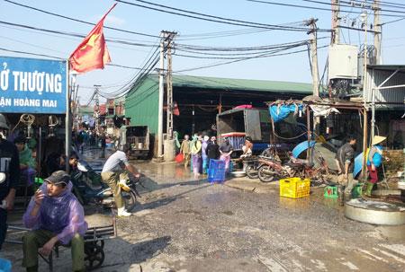 chợ cá đầu mối