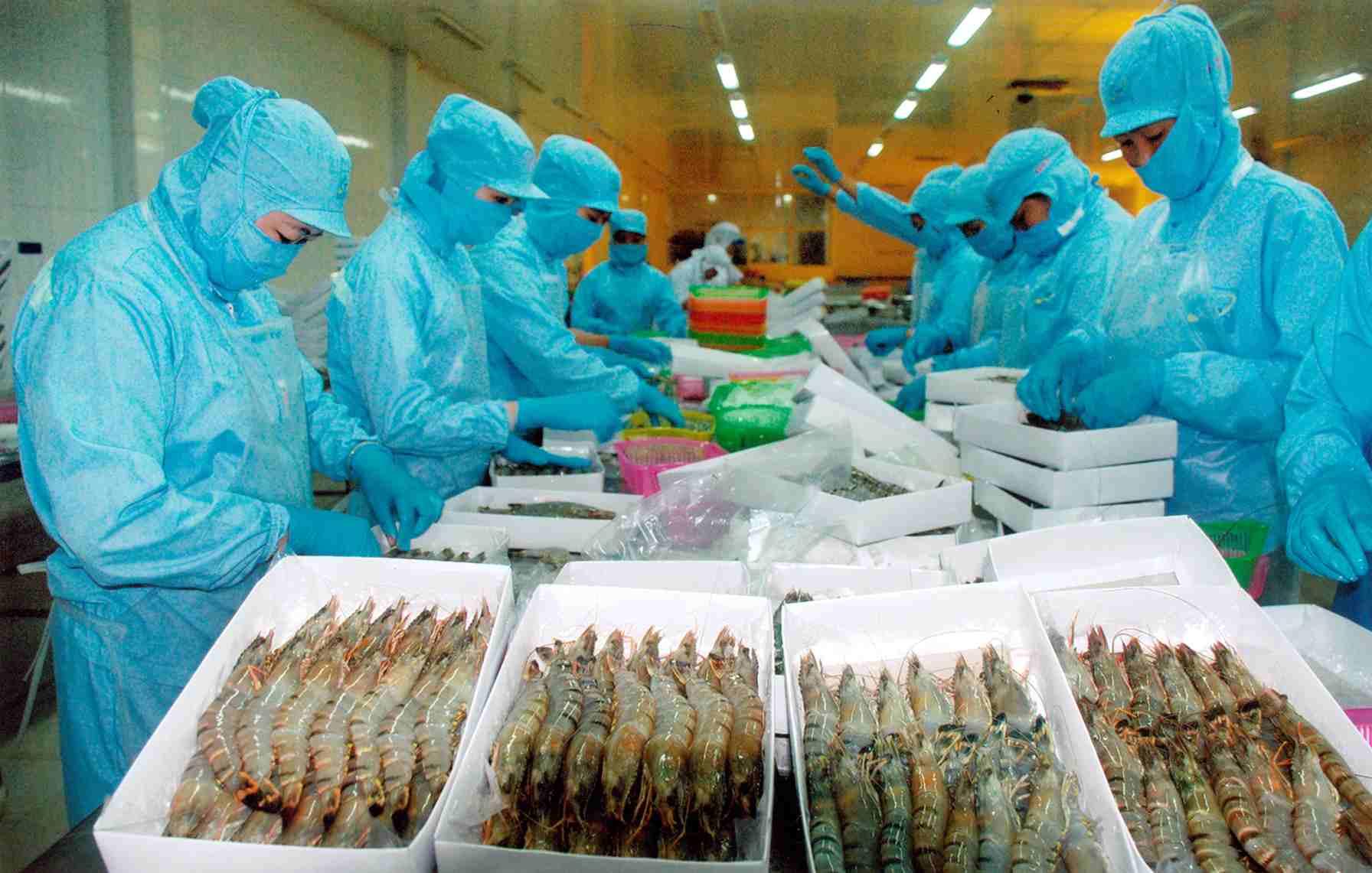 Kết quả hình ảnh cho hải sản việt nam
