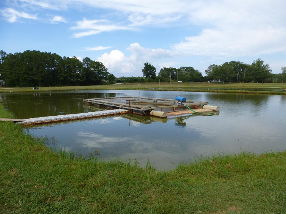 hệ thống nuôi thủy sản nước chảy