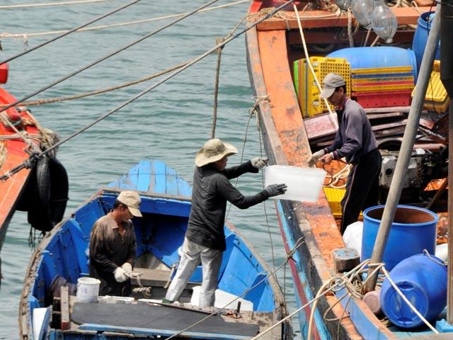 phát triển nghề cá
