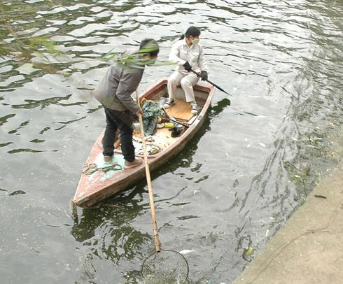 Dùng vi sinh vật xử lý nước