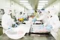 Sản lượng cá ngừ đại dương: Cung không đủ cầu