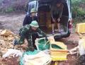 Quảng Ninh: Tiêu hủy trên 1,4 tấn cá sấu không rõ nguồn gốc