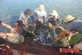 Phát triển bền vững kinh tế thủy sản