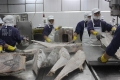 DN xuất khẩu thủy sản hưởng lợi khi Trung Quốc giảm thuế nhập khẩu