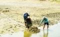 Khánh Hòa:Chậm vào vụ nuôi trồng thủy sản