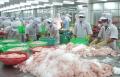 Ngăn ngừa lạm dụng kháng sinh trong nông nghiệp