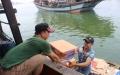 Làng câu mực Bình Chánh mở biển đầu năm