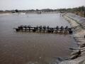 Hỗ trợ Trà Vinh phòng, chống dịch bệnh thủy sản