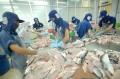 Việt Nam sẽ tổ chức Hội nghị bàn tròn về cá tra tại Seafood Expo Global 2017 - Brussels, Bỉ