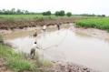 """Ngành Nông nghiệp về đích với mức tăng trưởng 0,9% """"Công đầu"""" thuộc về thủy sản"""