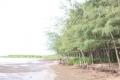 Kiểm soát môi trường góp phần bảo vệ nguồn lợi thủy sản