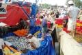 Thừa Thiên Huế: Tàu ngư dân vươn khơi sớm nhận lộc đầu năm mới
