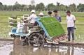 Chuyện hàng tuần: Nông nghiệp công nghệ cao bao giờ hết lạc hậu