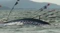 Tàu cá vỏ thép BĐ 99999 TS bị nạn trên biển