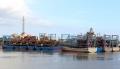 Nam Định khai thác hải sản bền vững