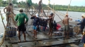 Đại gia cá tra vỡ nợ và bài học cho một ngành kinh tế