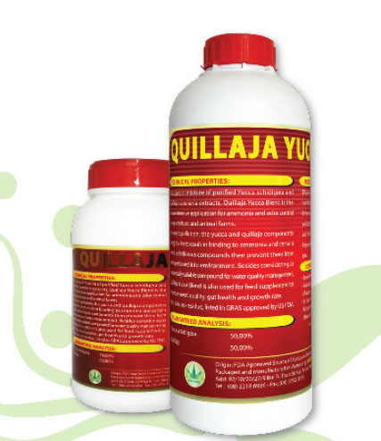 Quillaja Yucca Blend