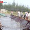 HTX Xuân Thành