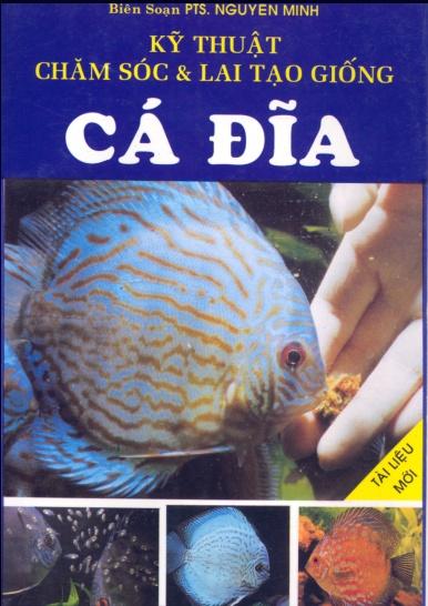 Kỹ thuật chăm sóc và lai tạo giống cá Đĩa