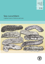 Sea cucumbers: A global review of fisheries and trade