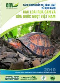 Rùa cạn và rùa nước ngọt Việt Nam