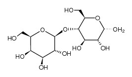 β-1,4-mannobiose trên tôm, β-1,4-mannobiose in shrimp, β-1,4-mannobiose, prebiotic trên tôm