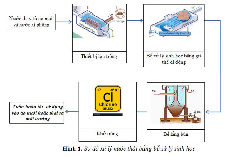 nuôi tôm, xử lý nước thải nuôi tôm