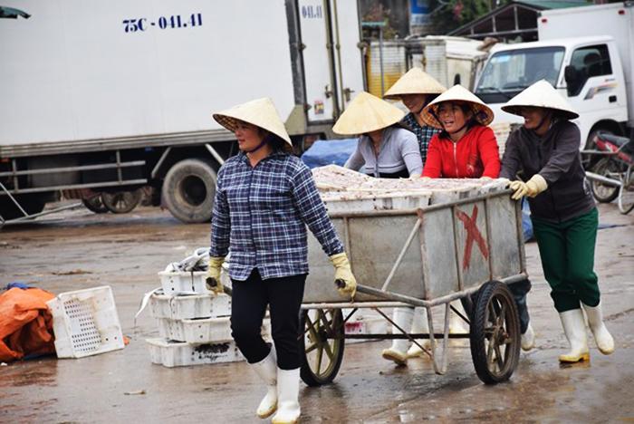 thủy sản Nghệ An, đánh bắt thủy sản, khai thác thủy sản, đánh bắt, sản lượng đánh bắt