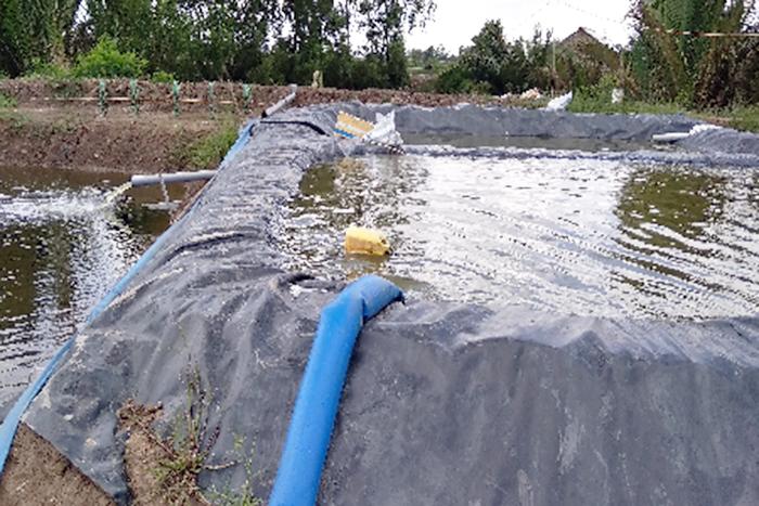Xử lý nước thải nuôi tôm, nuôi tôm siêu thâm canh, xử lý nước thải