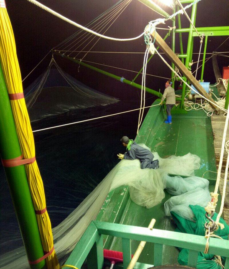 Đánh bắt, khai thác, đánh bắt thủy sản, thủy sản, chính sách thủy sản, nghề cá
