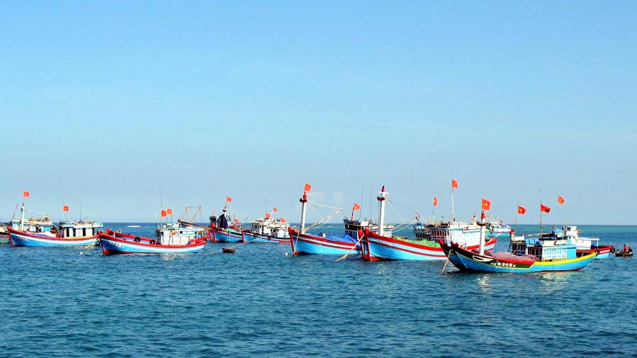 nuôi tôm, nuôi tôm Quảng Ninh, mô hình nuôi tôm, thủy sản