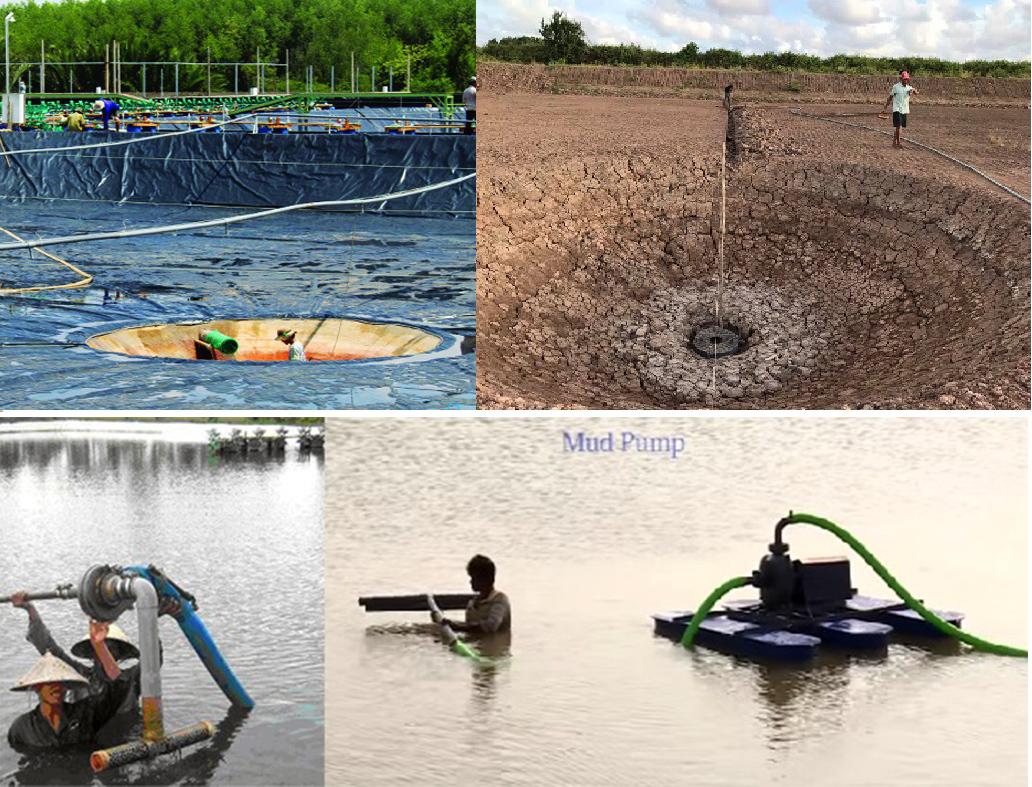 bùn đáy ao tôm, chất thải nuôi tôm, xử lý chất thải nuôi tôm, nuôi tôm, kỹ thuật nuôi tôm