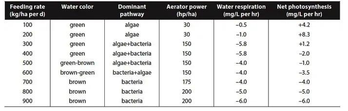 nuôi tôm, kỹ thuật nuôi tôm, biofloc, công nghệ biofloc, hệ thống biofloc