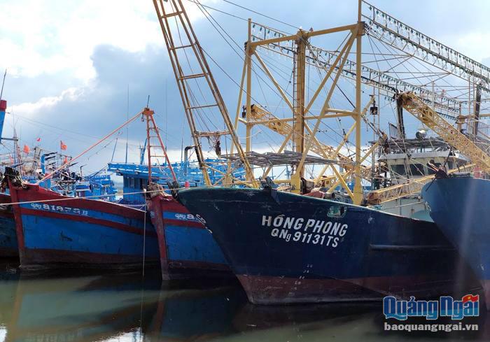 thủy sản, đánh bắt thủy sản, chính sách thủy sản, tàu cá