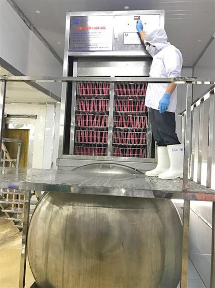 cá ngừ, chế biến cá ngừ, cấp đông cá ngừ, chế biến thủy sản