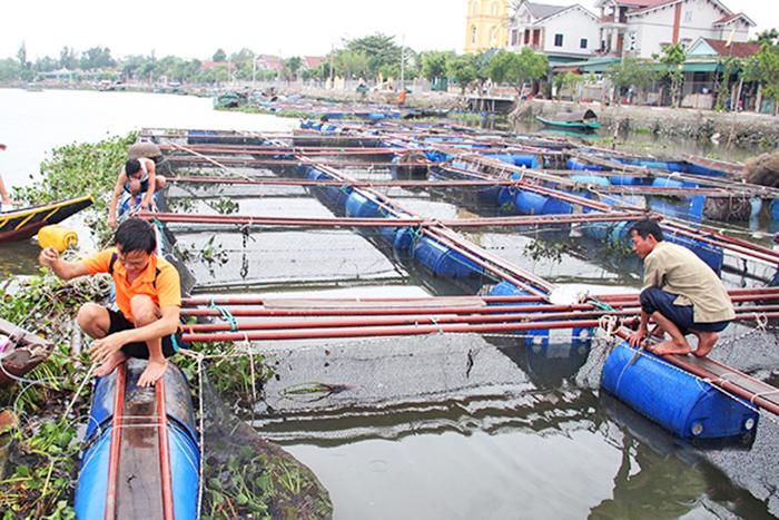thủy sản, nuôi trồng thủy sản, thủy sản mùa lũ, nuôi cá mùa lũ