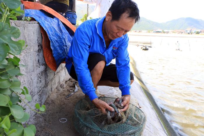 sản phẩm thủy sản, chế biến thủy sản, an toàn thực phẩm