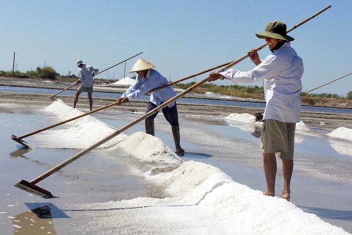 giá muối, sản xuất muối, làm muối