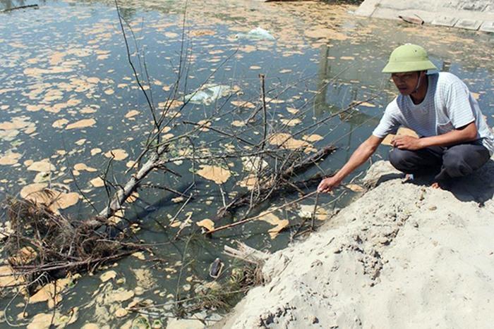 Nước xả nước thải từ hồ tôm chưa qua xử lý ra thẳng môi trường