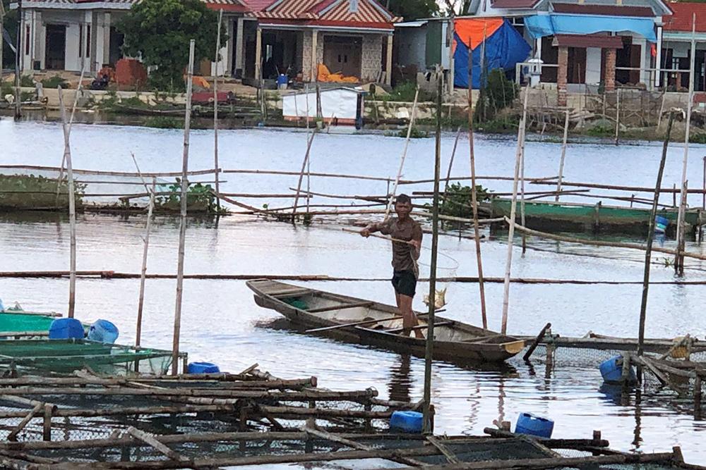 cá chết, nuôi cá, nuôi cá Thừa Thiên Huế, nuôi cá lồng