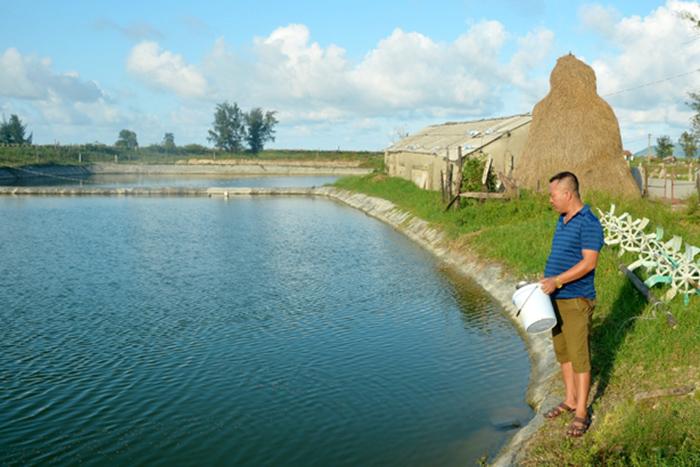 nuôi cá, nuôi cá lồng, nuôi cá Hà Tĩnh, nuôi cá mùa lũ, mô hình nuôi cá
