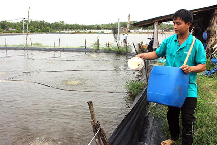Nuôi tôm, nuôi tôm Đồng Nai, nuôi tôm nước lợ