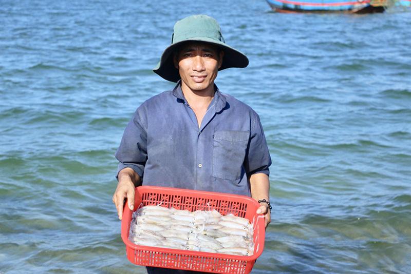 đánh bắt, đánh bắt thủy sản, tàu cá, khai thác thủy sản, thủy sản