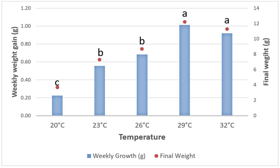 biểu đồ nhiệt độ