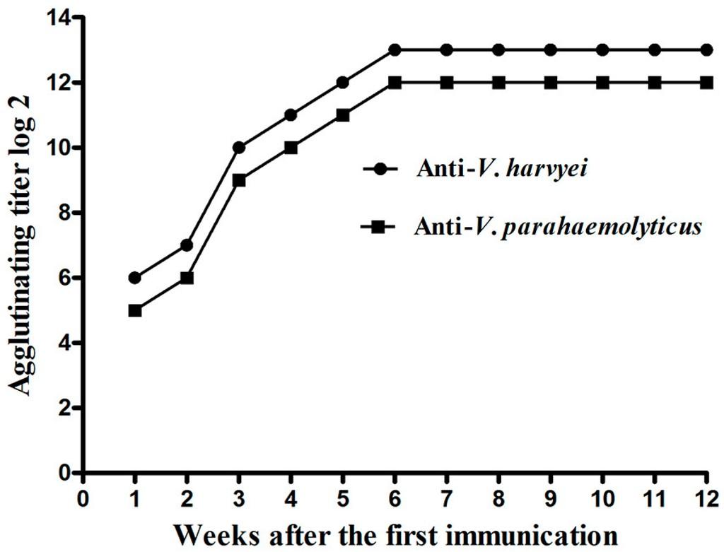 lòng đỏ trứng tăng miễn dịch trên tôm, miễn dịch thụ động trên tôm với lòng đỏ trứng