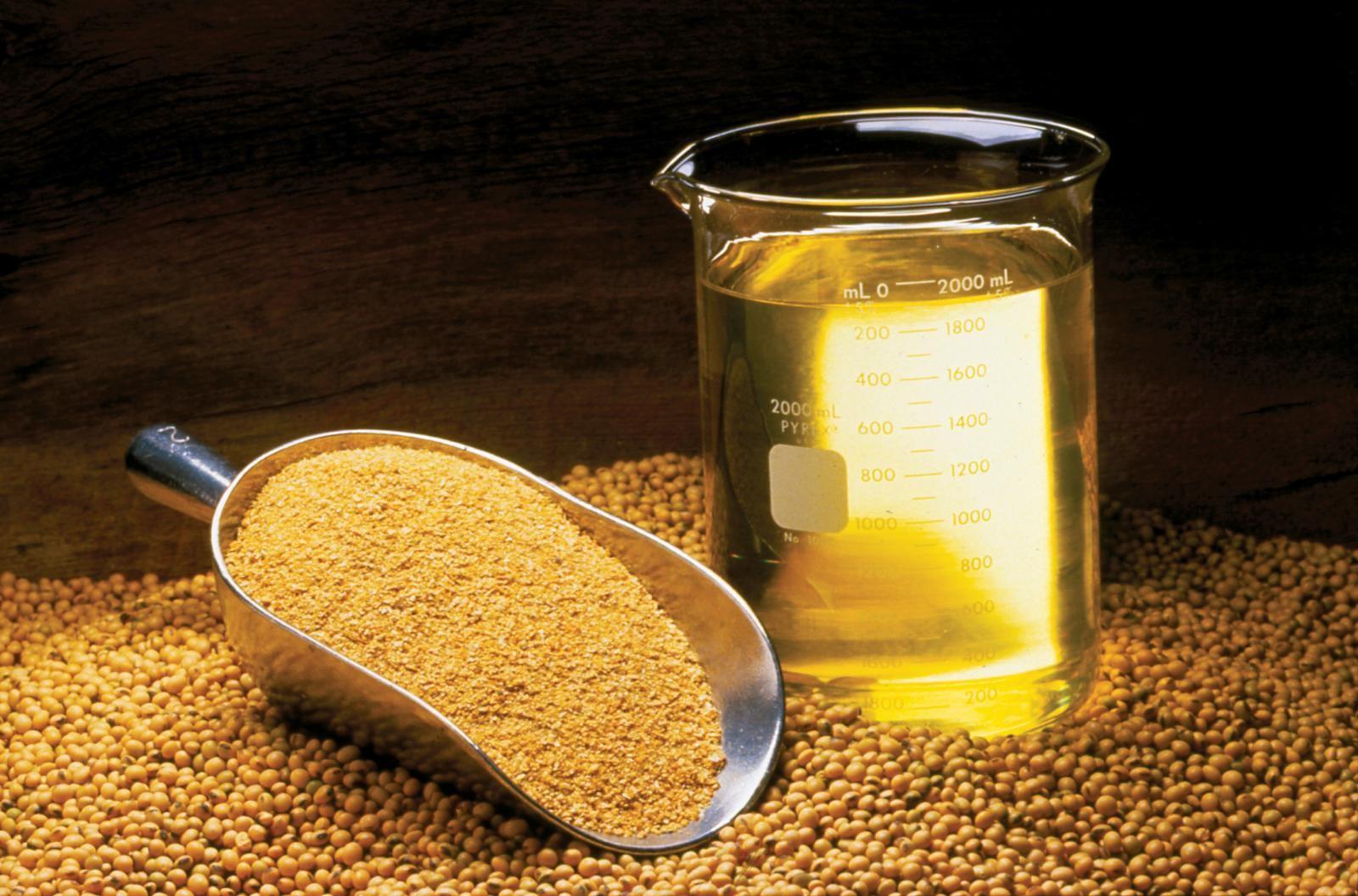 bột đậu nành lên men, lên men bột đậu nành, bột đậu nành trong thủy sản, thức ăn cho tôm, nguyên liệu thức ăn tôm