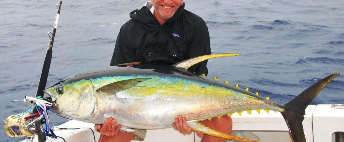 Công nghệ sử dụng Nano-Chitosan, bảo quản cá ngừ khi đánh bắt, cá ngừ vây vàng