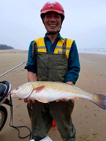cá sủ vàng, cá quý hiếm, cá lạ, cá sủ vàng khủng, cá 5kg